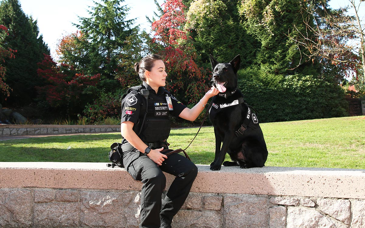 After graduating from JIBC's Law Enforcement Studies Diploma program, Courtney Lee was hired by Securiguard as a dog handler for Diesel, who specializes in explosives detection, at YVR.