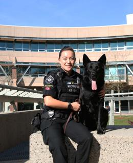 Courtney Lee has always wanted to work with dogs. After graduating from JIBC's Law Enforcement Studies Diploma program, she was hired by Securiguard as a dog handler for Diesel, who specializes in explosives detection, at YVR.
